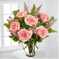 Pink Rose bastante