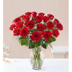 Rosas rojas de tallo largo Ultimate Elegance ™ (24 tallos rojos)