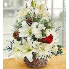 Invierno Nido de Flores de Aves (Deluxe)