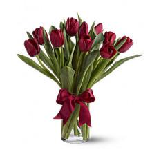 Tulipanes Radiantemente Rojos (Estándar)
