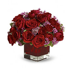 Never Let Go - 18 rosas rojas (estándar)