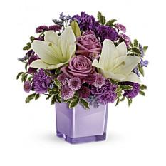 Agradables púrpura del ramo (Pequeño)