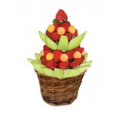 El árbol - Arreglo de la fruta