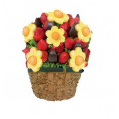 Fresa Margaritas - Arreglo de la fruta