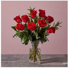 Rojo 1 docena de rosas
