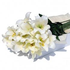 Flower Box White Lilies 24 piezas