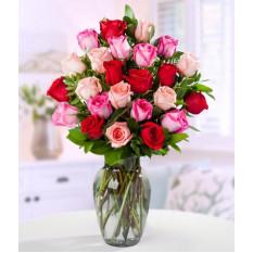 Rosas rosas dobles