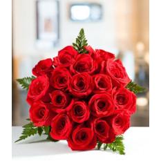 Dieciocho Rosas