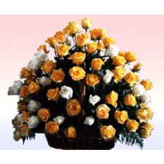 Celebración (48 Rosas)
