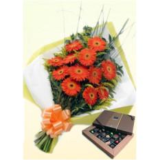Orange Beauty (12 Gerbera Daises + Chocolatesus)
