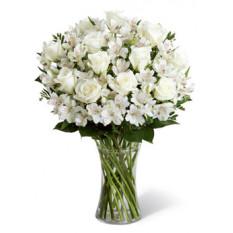 Pureza (6 rosas + flores)