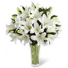 Una luz en tu honor (5 Lily Stemsus)