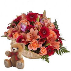 Fidelidad (6 Rosas + 3 Gerberas + 1 Lirio + Teddy Bearus)