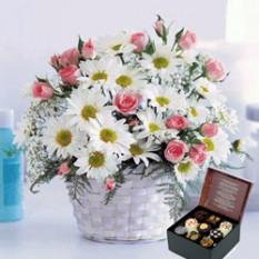 ¡Felicidades! (12 Rosas + Daises + Caja de Chocolatesus)