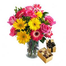 Te amo (6 Gerberas + 9 Rosas + Chocolatesus)
