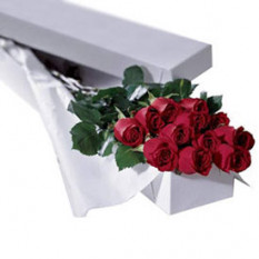 Rosas en caja (12 rosas)