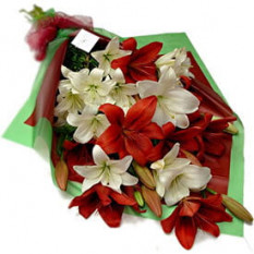 Lirios Star Bouquet (4 tallos)