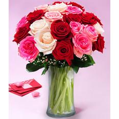 Romantika (12 rosas)