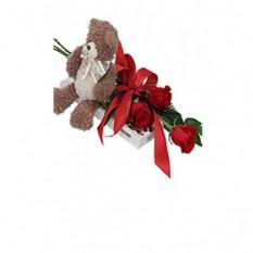 Oso, chocolate y 3 rosas