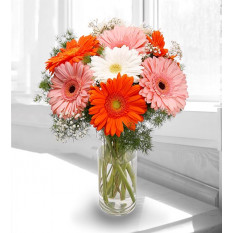 Aromatic Gerberas - Brighter Side of Life (Without Vase)