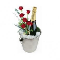 Celebrando Por Ti