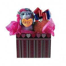 Erizo con conjunto de regalo de asas de galletas en forma de corazón
