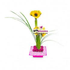 Arreglo Floral para Ella - ELLA005