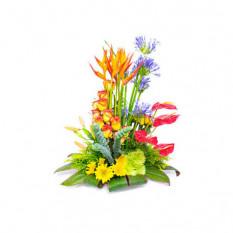 Arreglo Floral para Ella - ELLA009