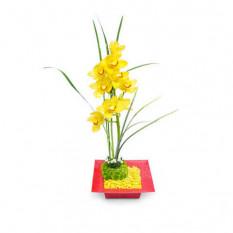 Arreglo Floral de Orquídeas - ORQ085