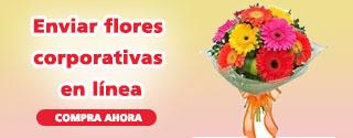 envir-flores