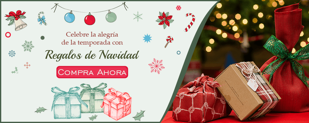 Entrega de Regalos de Navidad a España